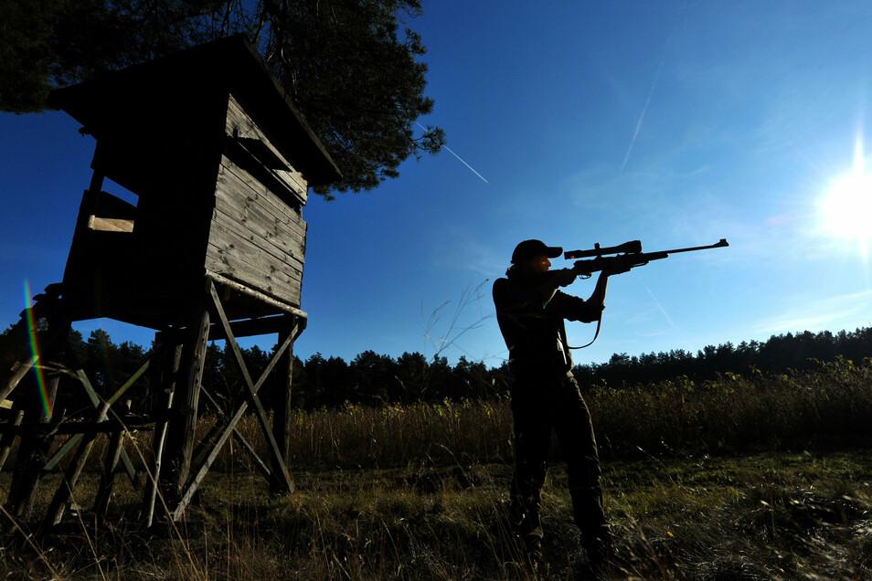 Die Jagdruhe in der Restriktionszone soll so kurz wie möglich gehalten werden.