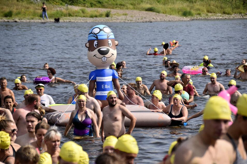Tausende Dresdner wagten sich am Sonntag in die Elbe.