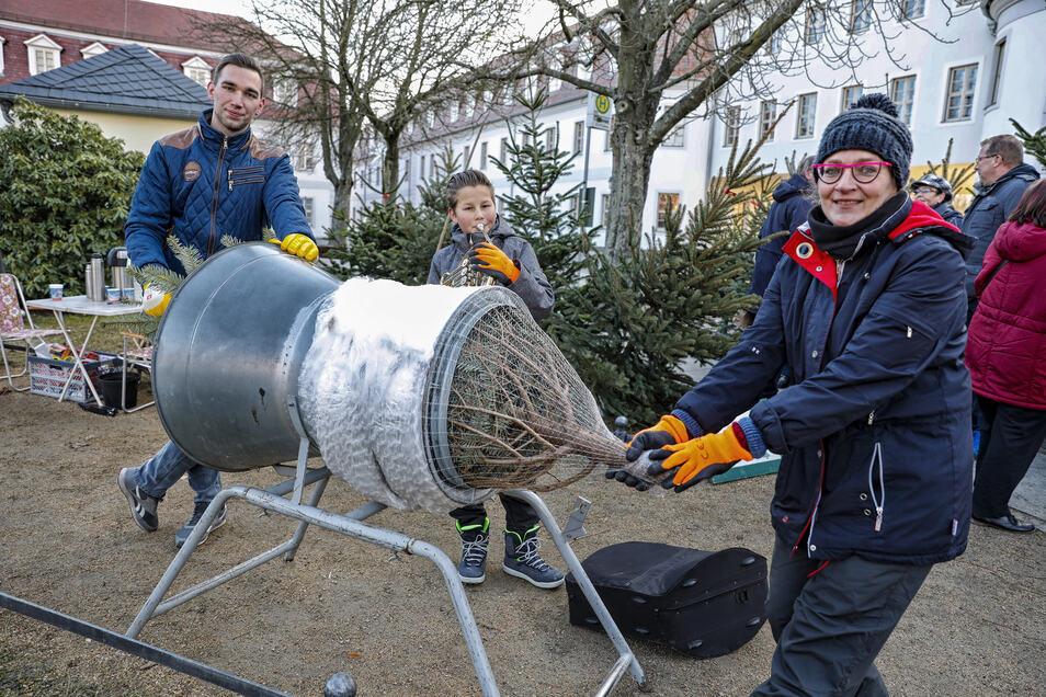 Auf dem Weihnachtsmarkt in Herrnhut gab's auch schon Tannenbäume.