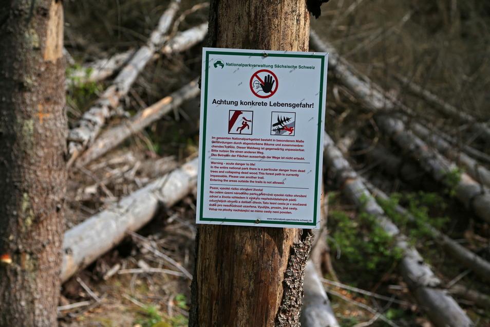 Achtung Lebensgefahr: Mehrere Wanderwege im Nationalpark Sächsische Schweiz sind durch umgestürzte Bäume versperrt.