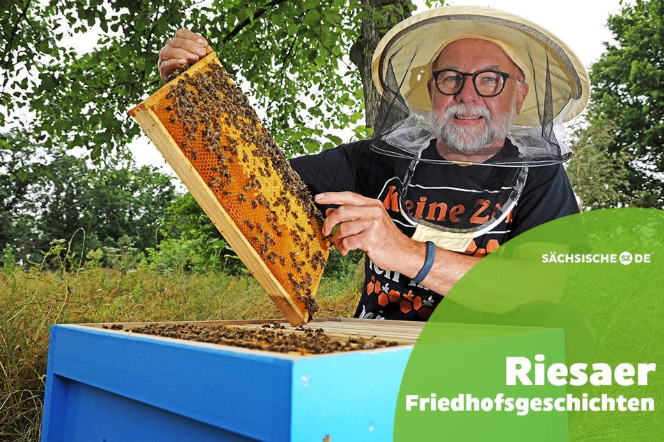 Hans-Gunter Große an einer seiner Bienenbeuten auf dem Friedhofsgelände. Hier finden die Tiere das ganze Sommerhalbjahr über Futter. Auch sonst schätzt Große den Trinitatisfriedhof als Erholungsort.