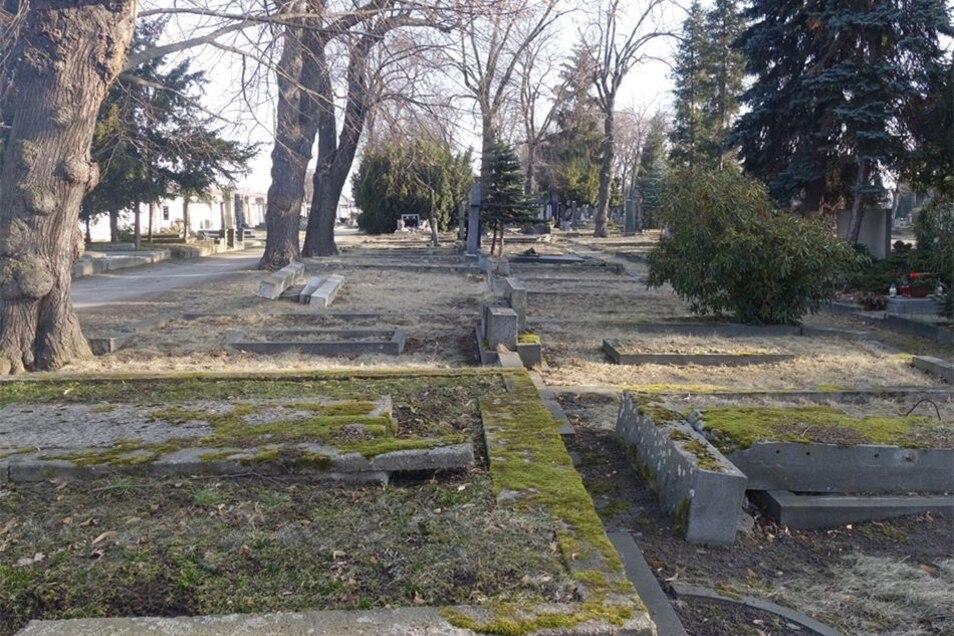 An Platz mangelt es dem Friedhof Chomutov nicht. Viele deutsche Grabstellen wurden schon beseitigt.