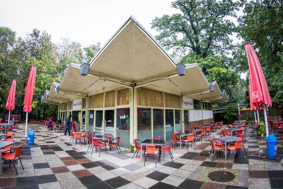2015 stand das Pinguincafé noch im Dresdner Zoo. Nun könnte es bald in die Öffentlichkeit zurückkehren.