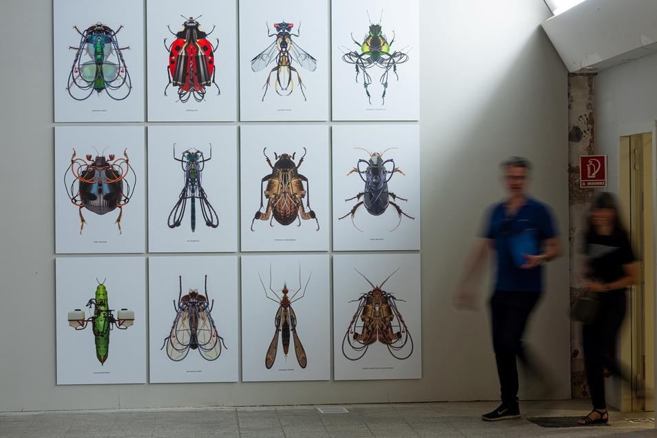 """Sind das noch Insekten oder schon Maschinen? Druckgrafiken von Jan Sebesta mit dem Titel """"Exterminati mechanica""""."""