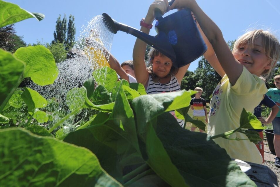 Vivien (Mitte) und Lorraine (vorn) aus der Klasse 3 a gießen das neue Hochbeet im Schulgarten.