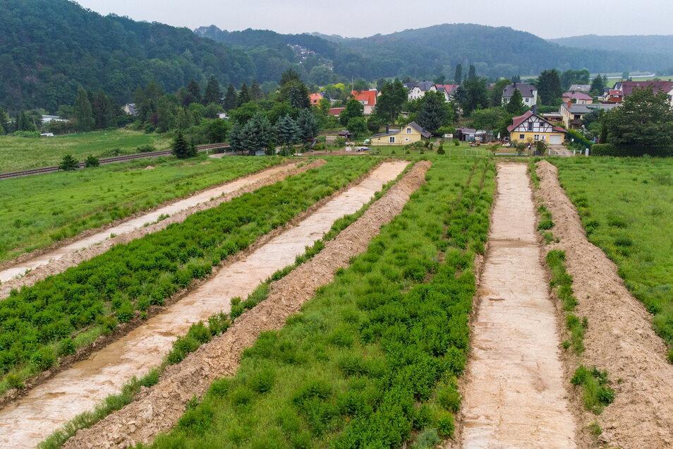Archäologen haben vor Baubeginn auf dem Areal, auf dem der Eigenheimstandort entstehen soll, gegraben.