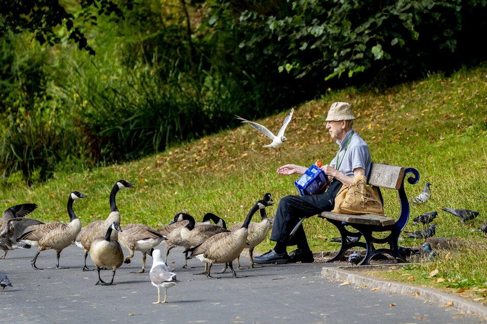 Im Landkreis Görlitz sinkt die Zahl der Einwohner. Doch gleichzeitig nimmt deren Alter zu.