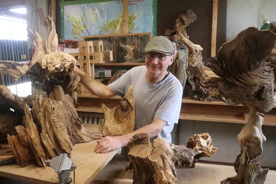 Der sorbische Holzgestalter Aloysius Scholze (57) aus Säuritz bei Panschwitz-Kuckau ist seit früher Jugend fasziniert von Wurzeln und Holzformen in freier Natur.