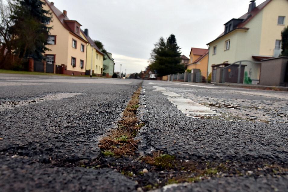 In der Rosa-Luxemburg-Straße gibt es viele Stellen, an denen Nachbesserungsbedarf besteht.