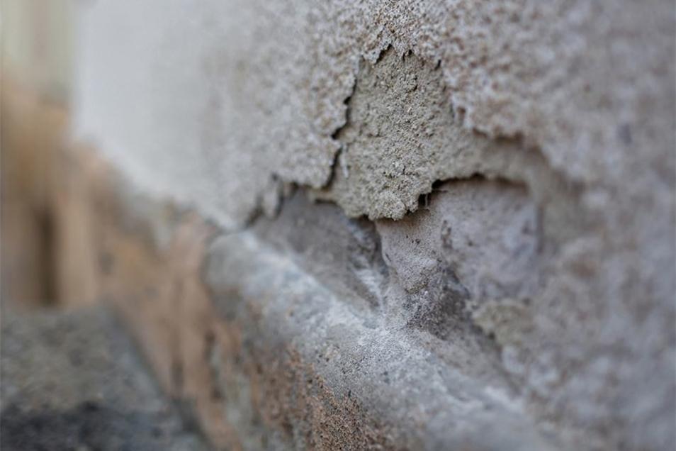 Der Steinsockel und der bröckelnde Putz stehen ganz oben auf der Liste. Auch in der Außenanlage soll sich einiges ändern.