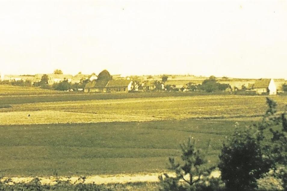"""erstmals erwähnt 1353 als Sellende/Sella (Ort eines Sell) gehörte """"zum Gute Hayn"""" unweit von Krakau, zuletzt 120 Einwohner, verlassen 1938"""