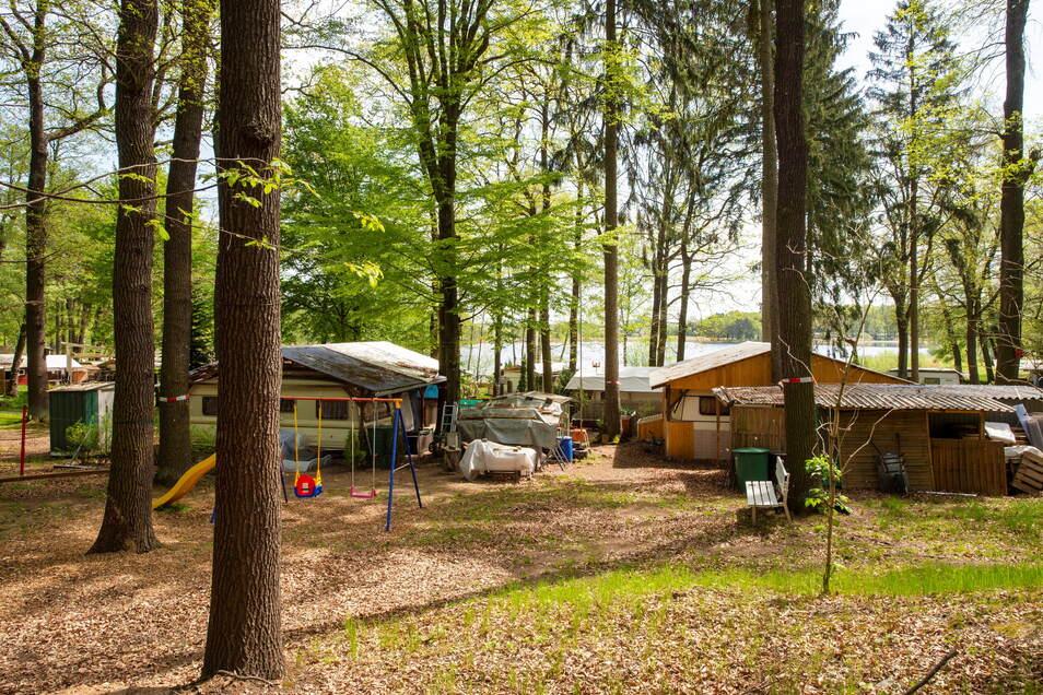 Der Platz am Oberen Waldteich in Boxdorf ist für viele Camper ein Paradies. Zum Teil bereits seit Jahrzehnten. Doch seit dem Frühjahr ist es mit der Ruhe vorbei. Denn der Pächter hat gekündigt. Die Gemeinde Moritzburg sieht das aber anders.