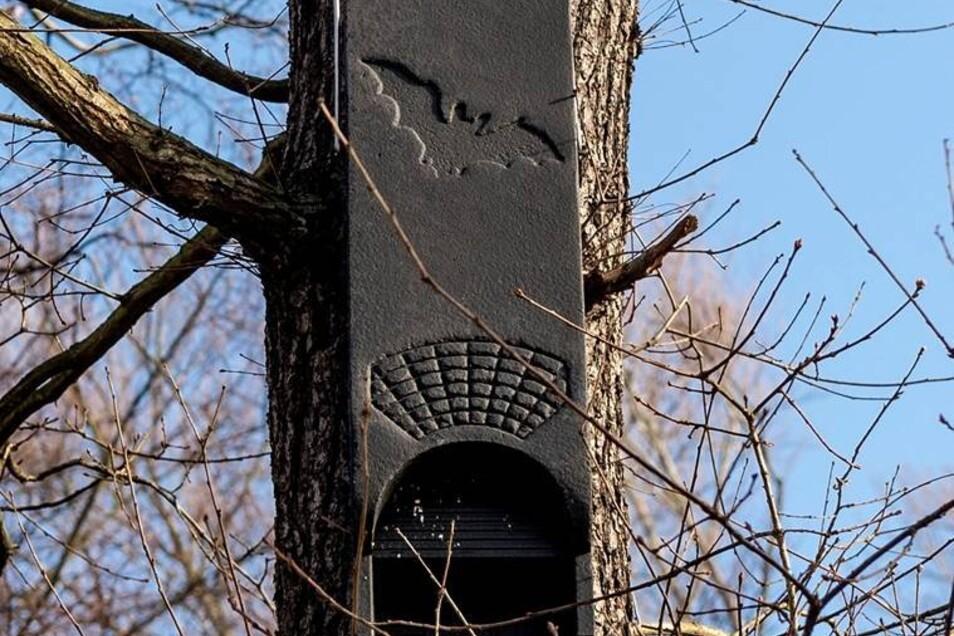 Notquartier für die Fledermäuse. Für die Tiere werden alte Gänge erhalten und Winterquartiere im Heizkraftwerk geschaffen.