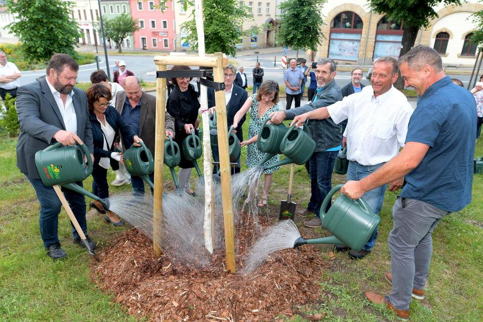 Die Stadträte pflanzten am Promenadenring eine Eiche.