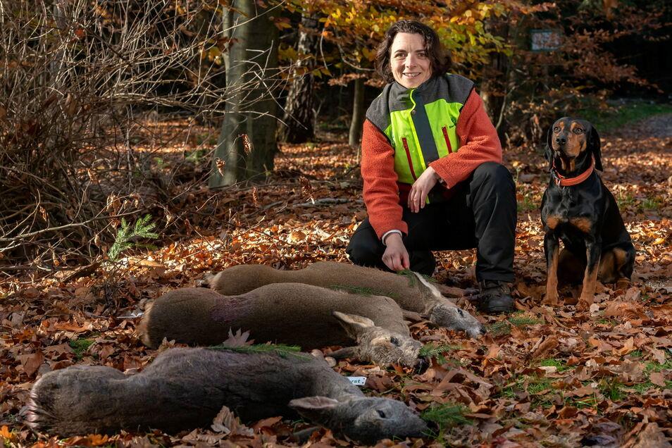 Kerstin Rödiger vom Forstbezirk Neustadt nach einer Drückjagd im Liebethaler Wald bei Lohmen.