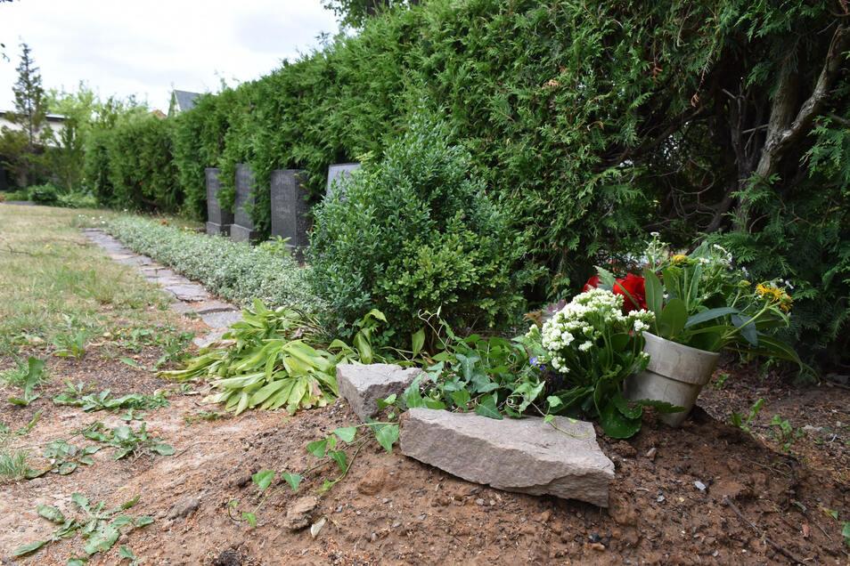 Bereits um Sommer 2019 wurden die Soldaten umgebettet und ruhen jetzt auf dem Friedhof in Kreischa.