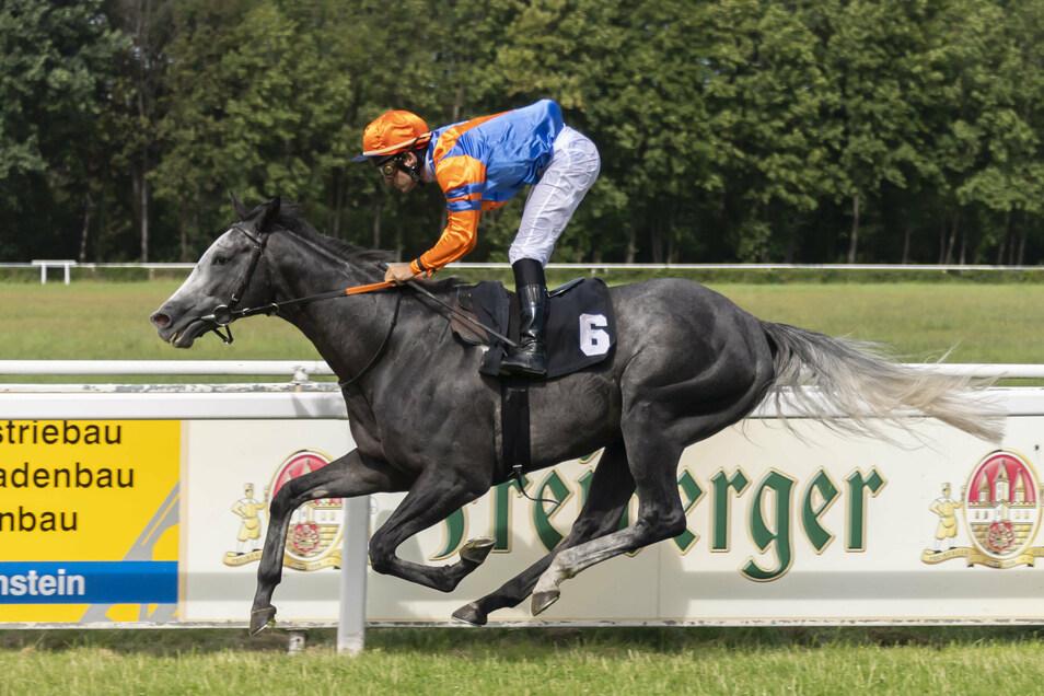 Jockey Maxim Pecheur führt den Hengst Moonlight Man im wichtigsten Rennen des Tages zum Sieg.