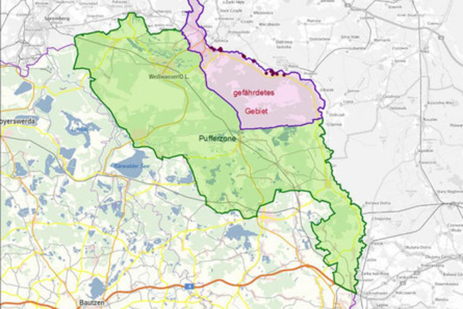 Diese Zonen hat das Sozialministerium im Landkreis Görlitz rund um die bisherigen Funde von Wildschweinen gezogen, die sich mit der Afrikanischen Schweinepest infiziert hatten.