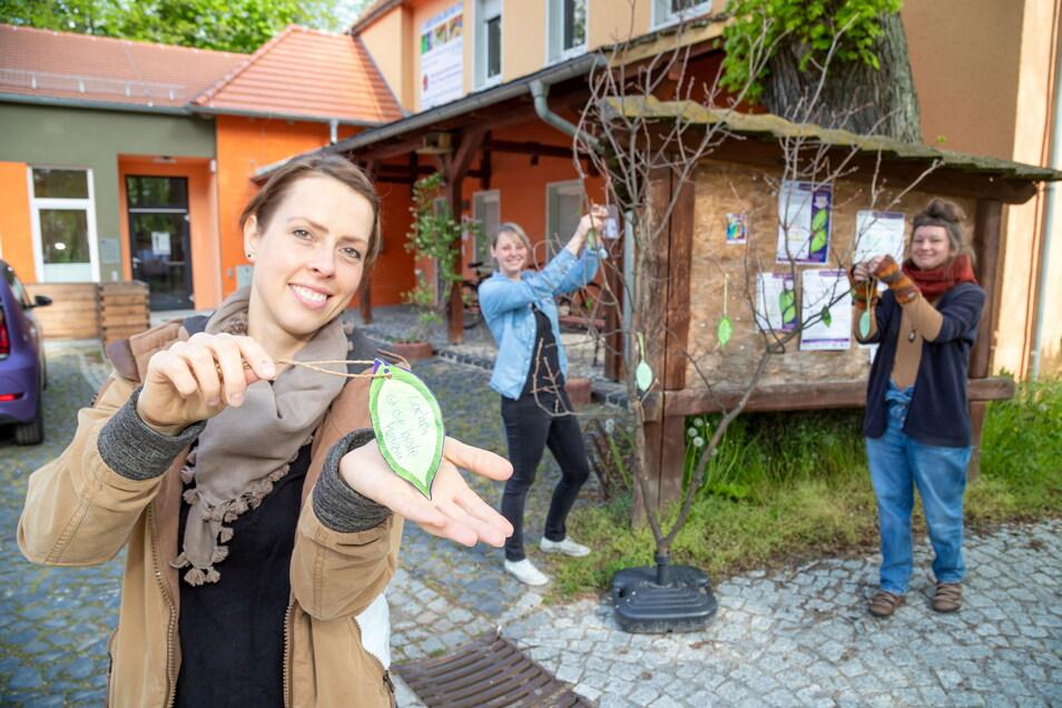 Daniela Teßmer (von links), Julia Funke und Helen Linde vom Mehrgenerationenhaus in Rothenburg machen bei der Aktion mit.
