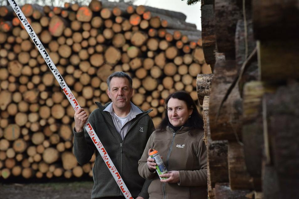 Annett Jung und Christoph Schönbach von der Forstbetriebsgemeinschaft Freiberger Land - Erzgebirge mit 1300 Festmetern Holz von Privatwaldbesitzern auf Holzlagerplatz bei Ruppendorf.