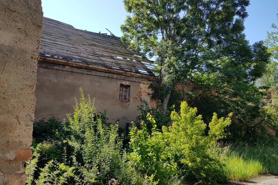 """Auch gegenüber vom """"Böhmerwald"""" sieht das Bild nicht besser aus: Das Dach verdient den Namen nicht mehr."""