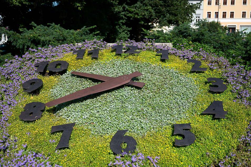 Die Blumenuhr auf dem Demianiplatz in Görlitz zeigt derzeit nicht immer die korrekte Uhrzeit an.