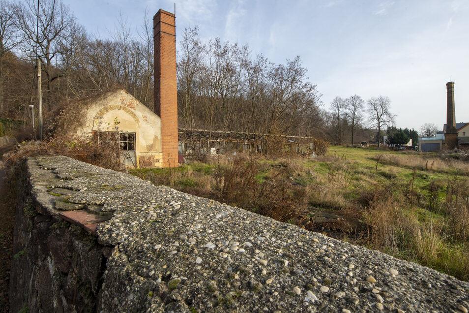 Hier wollte ein Investor vier Einfamilienhäuser in bester Hanglage bauen. Das Landesamt für Denkmalpflege erteilte dem Vorhaben jedoch eine Absage.