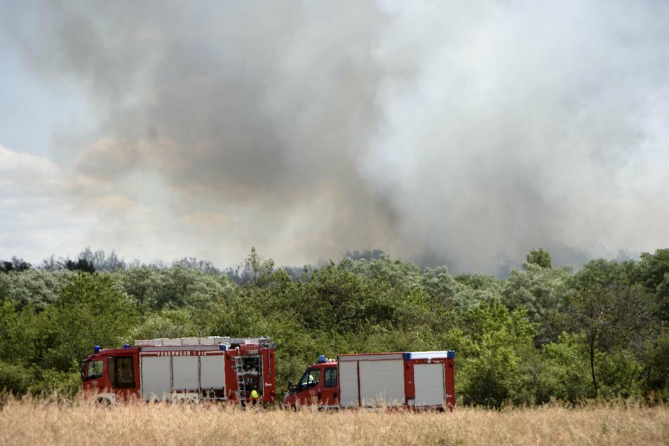 Feuerwehreinsatz in der Gohrischheide: Wie hier vor einem reichlichen Jahr hat es auch am Sonntag wieder in dem ehemaligen Militärareal gebrannt. Das macht das Löschen zu einer Herausforderng.