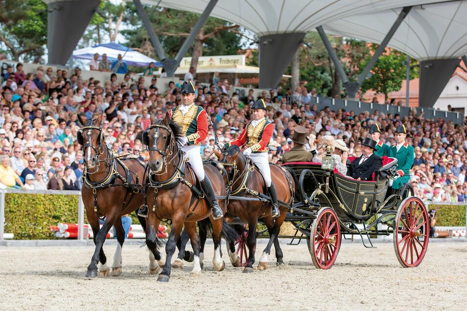 n der königlich-sächsischen Staatskalesche, hier bei der Hengstparade, rollte 1997 die niederländische Königin Beatrix durch Moritzburg.