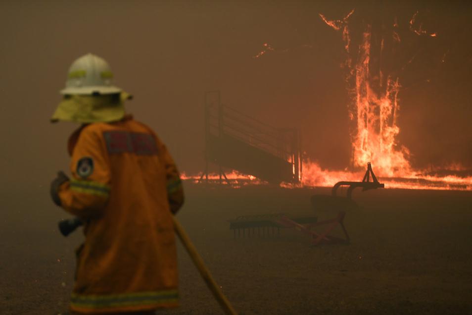 Unter den Feuerwehrleuten, die in Australien gegen die Buschbrände kämpfen, sind zehntausende Freiwillige.