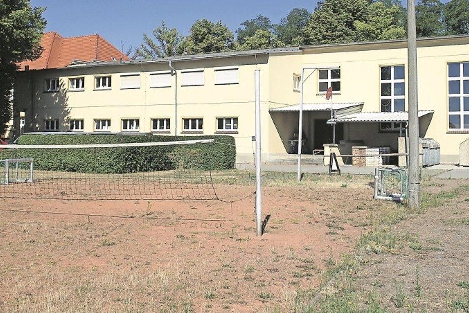 Am Turnerheim in Weißwasser sprießt das Unkraut auf dem Volleyballplatz.