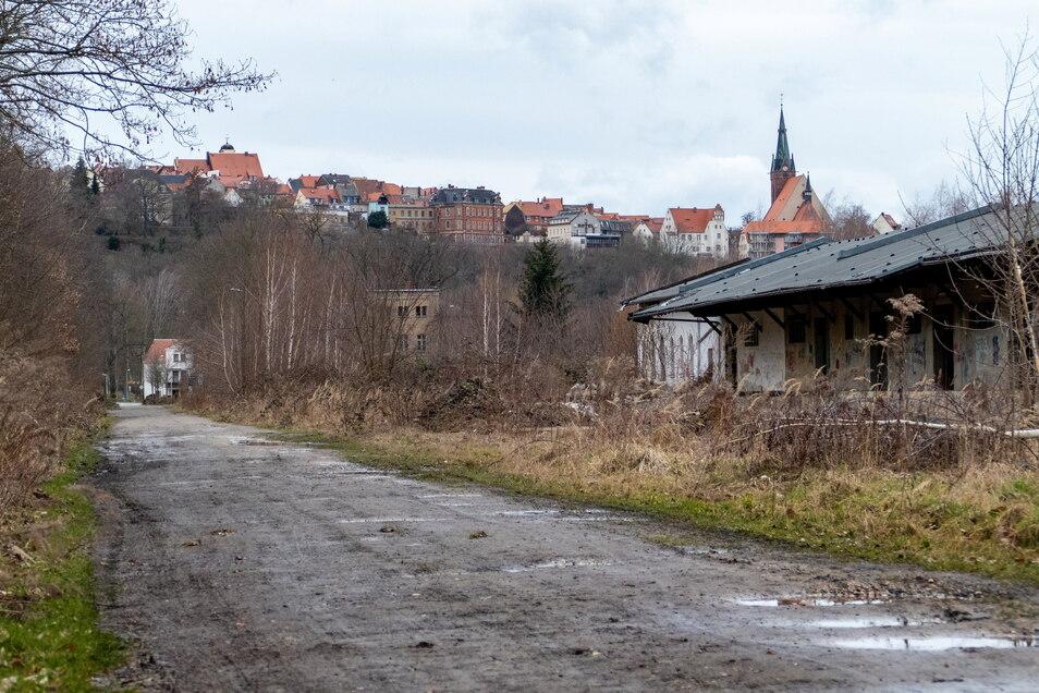 Der Muldental- und Obstlandradweg ist auf dem Gelände des ehemaligen Güterbahnhofes von Leisnig in katastrophalem Zustand. Das will die Kommune ändern und schiebt dafür eine Planung an.