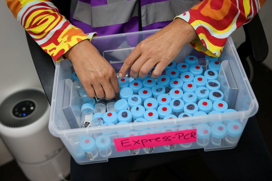 Eine Mitarbeiterin sortiert noch unbenutzte Behälter für einen PCR-Gurgeltest in einem Testcenter. Die Inzidenz im Landkreis Meißen hat sich am Dienstag nur geringfügig auf 38,7 erhöht.
