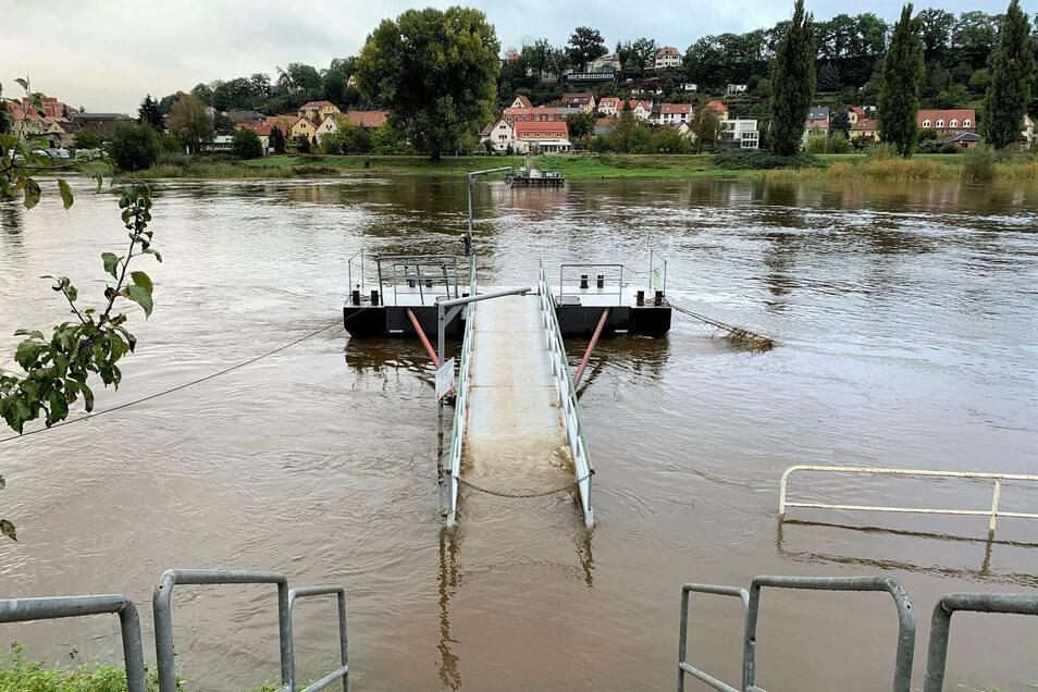 Steht unter Wasser: der Fähranleger in Pirna.