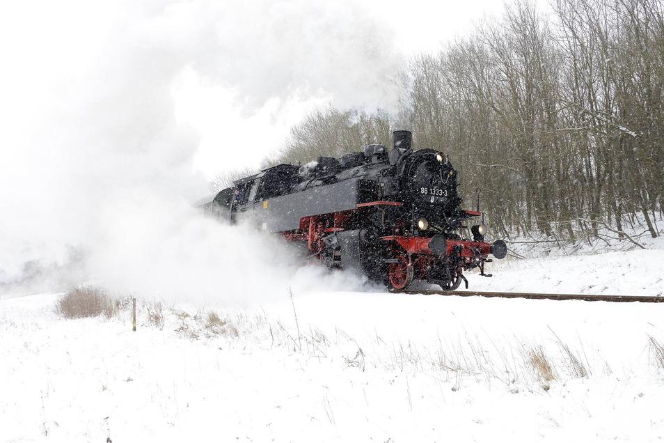 So ein Bild wird es in diesem Jahr nicht geben. Der Lausitzer Dampflok-Club fährt nicht nach Altenberg.