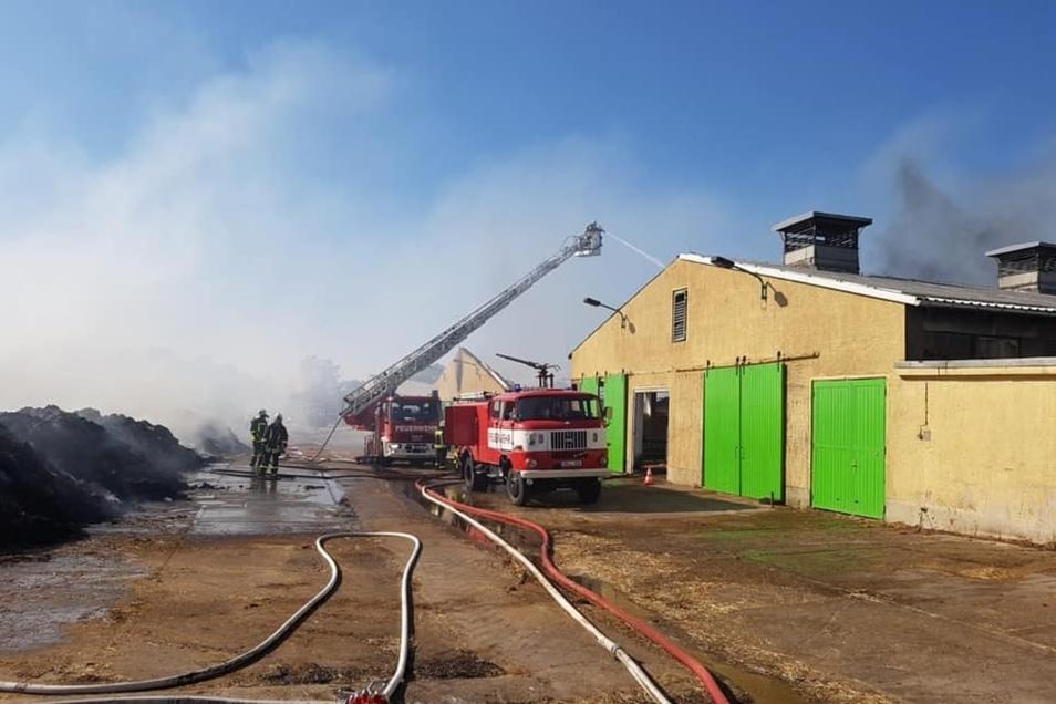 Die Feuerwehren der Region kämpfen derzeit gegen einen Großbrand bei der Agrargenossenschaft Skäßchen.