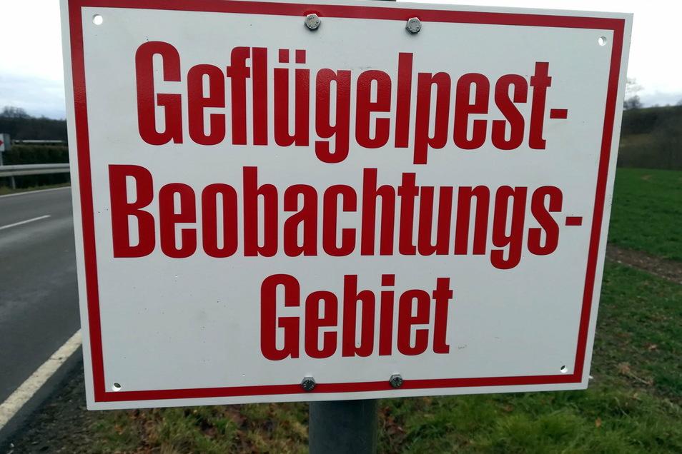 Die Region Leisnig sowie ein teil der Gemeinde Großweitzschen gelten voraussichtlich noch bis Freitag als Beobachtungsgebiet in Sachen Geflügelpest.