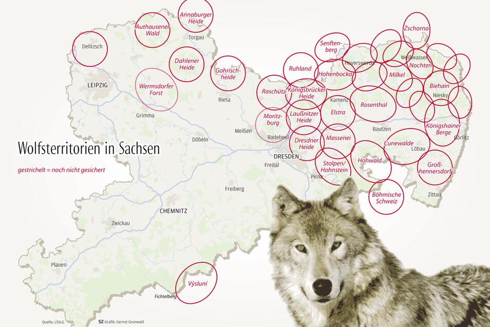Die Wolfsrudel im Überblick. Mehr Infos zu den einzelnen Territorien finden Sie in unserer interaktiven Karte am Ende des Artikels.