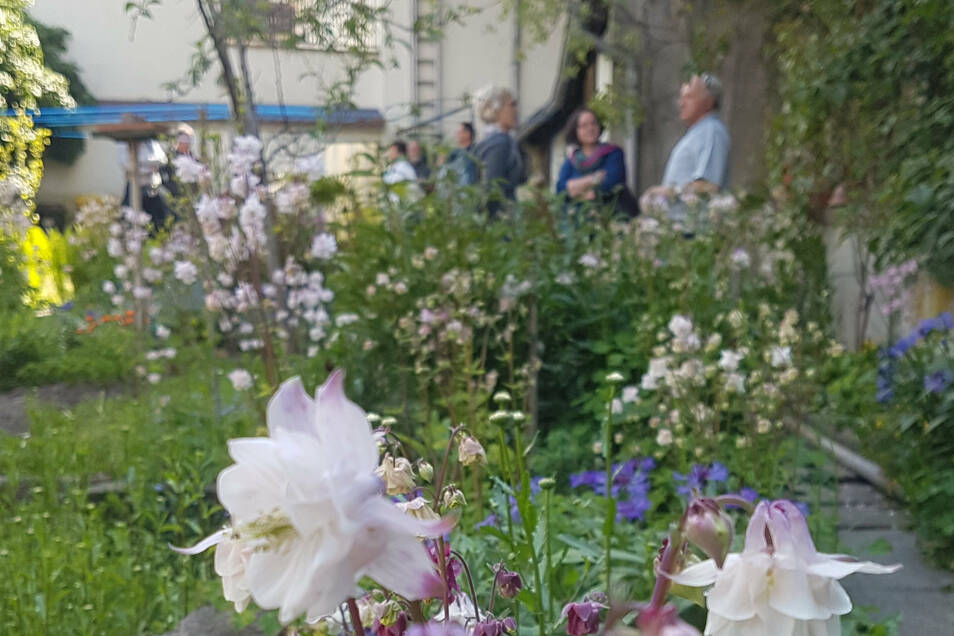 Entlang der alten Stadtmauer an der Bautzener- und Wallstraße gibt es einen breiteren grünen Gürtel zwischen den Häusern. Hier haben die Kamenzer wunderbare Gärten angelegt.
