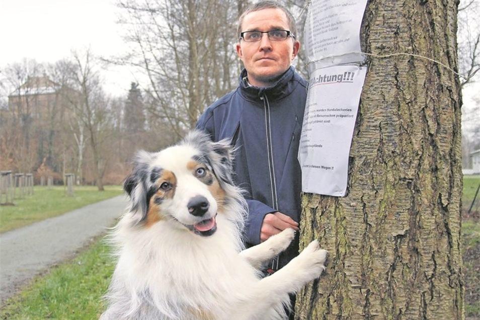 Bei einem Spaziergang am Poetenweg hatte Hündin Lien einen vergifteten Hundekuchen aufgespürt. Herrchen Thomas Liebold fand noch viele weitere und hat zur Warnung der Hundehalter Zettel in Löbau-Ost aufgehängt. Fotos: Thomas Eichler