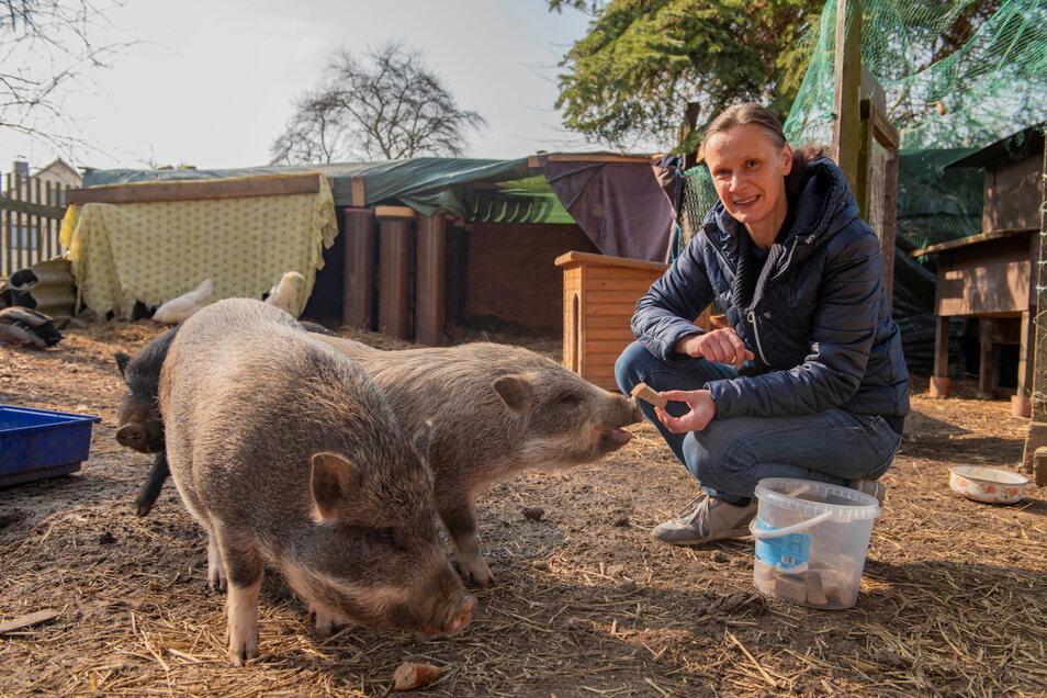 Simone Staatz hat auf ihrem Hof in Blattersleben ein liebevolles Zuhause für all jene Tiere geschaffen, die sonst keines mehr hätten. Die Schweine Knacki, Bocki und Pfötchen genießen die Zuwendung.