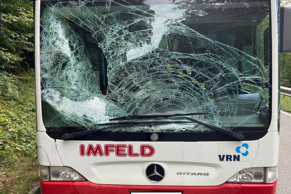 Die Frontscheibe eines Lininebusses ist nach einem Wildunfall mit einem Hirsch zerstört.