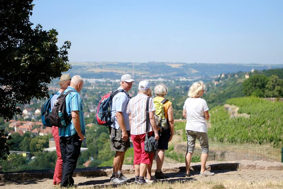 Ausgedehnte Wanderungen oder kleine Spaziergänge entlang der Weinberge in und um Radebeul.