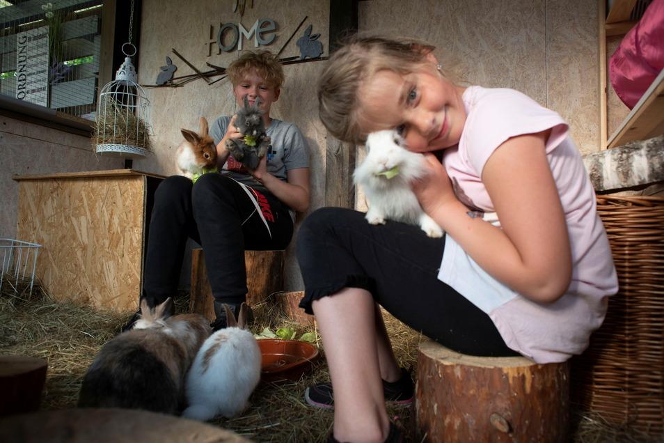 Vorrangig für eine große Kaninchen-Oase wurde der Garten angeschafft. Sunny und Lenni hatten sich schon immer Tiere gewünscht. Hier gibt's genügend Platz für ihre sechs Hasen.