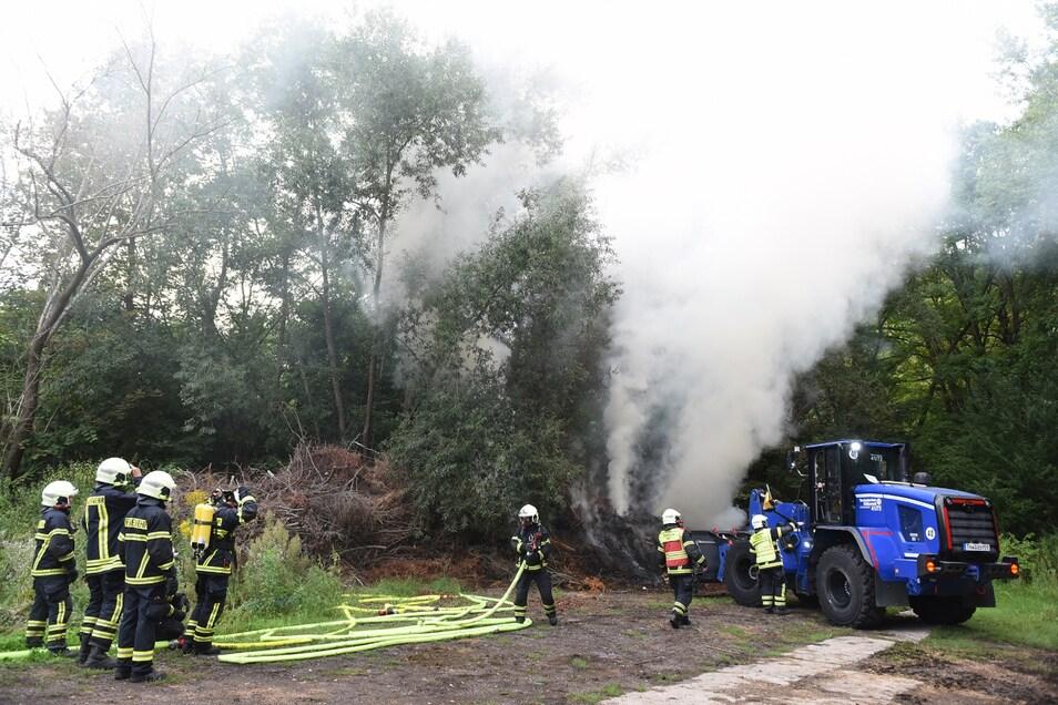 Ein Radlader des THW hilft zahlreichen Feuerwehrleuten in den Döbelner Klostergärten beim Löschen.