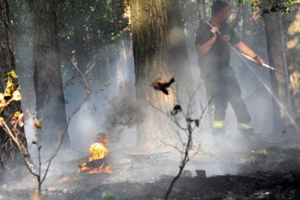 Die Feuerwehr löscht den Brand zwischen Weißwasser und Halbendorf.