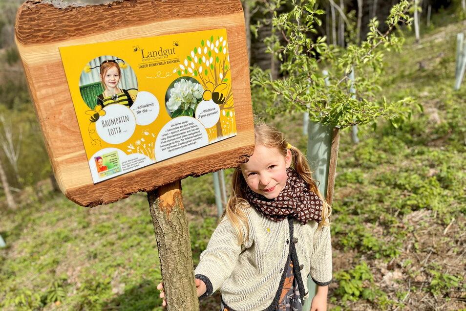 Nachwuchs als Naturschützer: Lotta engagiert sich als Baumpatin für den 1. sächsischen Bienenwald in Liebstadt auf dem Landgut Kemper und Schlomski.