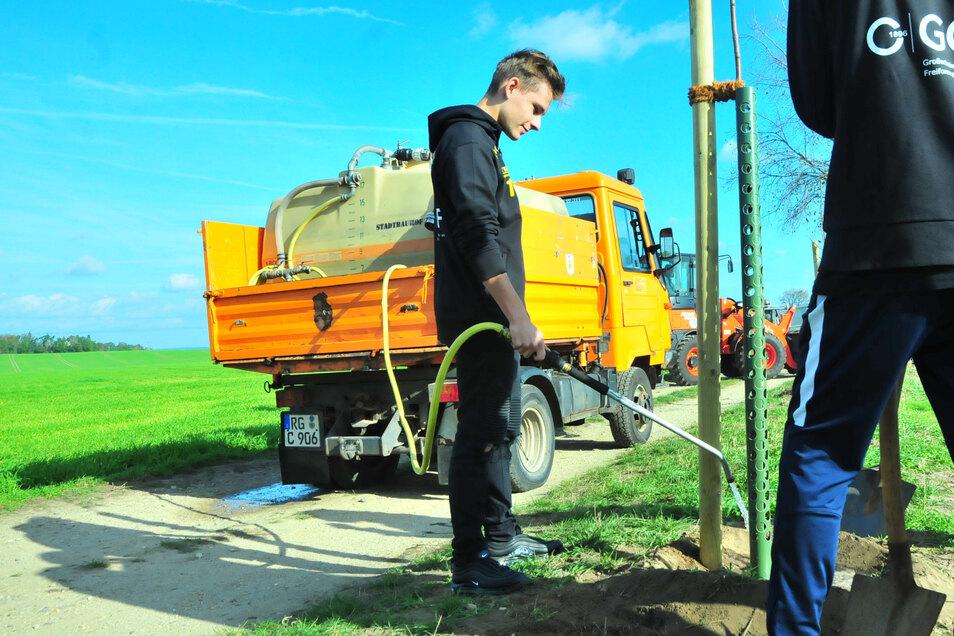 Wie hier beim Baumpflanzen am Feldrand in Zschauitz müssen junge Stämme gewässert werden, damit sie nicht eingehen. Doch die Stadt Großenhain schafft das nicht allein.
