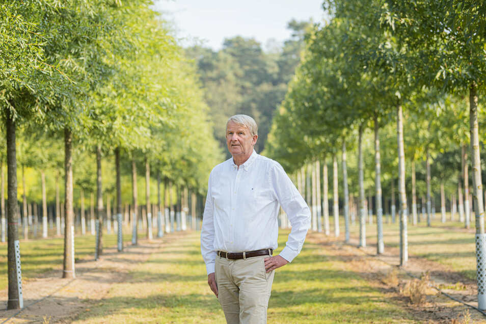 Jan-Diedrich Bruns – hier auf einem Feld zwischen Amberbäumen und Klimaeichen – sieht eine gute Zukunft für die Baumschulen.