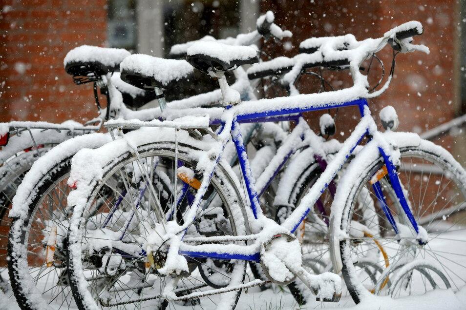 Diese Fahrräder in Zittau machen auch eine Winterpause und lassen sich zuschneien.